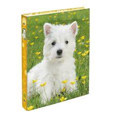 Classeur rigide A4 dos 40mm Animaux domestiques Chien blanc