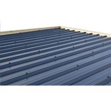 Abri jardin bois APETINA / toit plat avec auvent / 10.29 m²