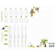Sous-main scolaire 25 feuilles conjugaison + multiplication