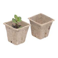 Lot de 24 pots biodégradables en fibre - 6 x 6 cm