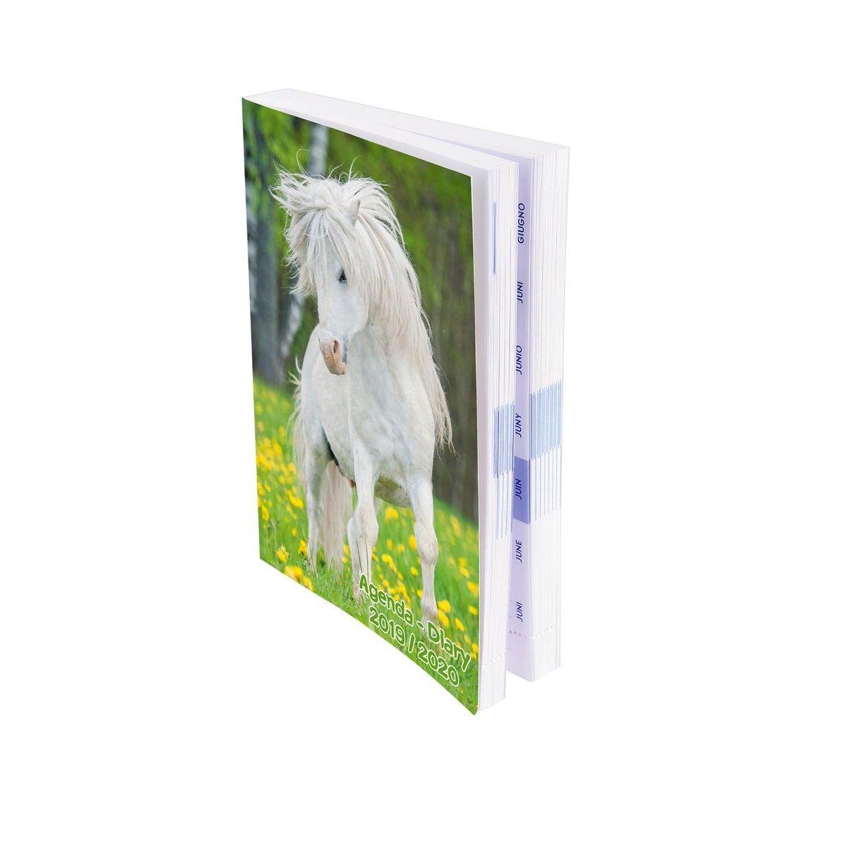 Agenda scolaire journalier fille 384 pages 12x17cm couverture vernie animaux domestiques poney blanc 2019 2020