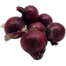 Oignons rouges botte pièce 1 pièce
