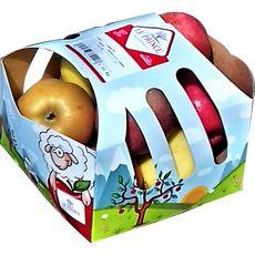 THOMAS LE PRINCE Thomas Le Prince - Pommes Panachées 1.5kg : Golden, Gala & Canada. 1.5kg