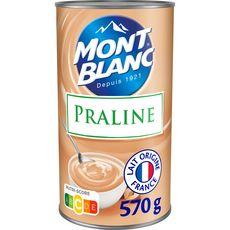 MONT BLANC Crème dessert saveur praliné 570g