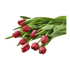 Fleurs - Bouquet de 9 tulipes rouges 1 pièce