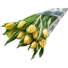 Fleurs - Bouquet de 10 tulipes jaunes 1 bouquet