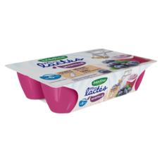 BLEDINA Les mini lactés petit pot dessert à la myrtille dès 6 mois 6x55g