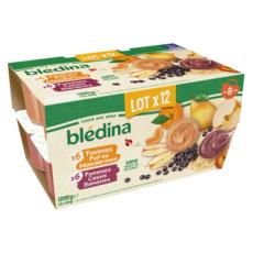 BLEDINA Petits pots de purée de fruits panaché dès 8 mois 12x100g