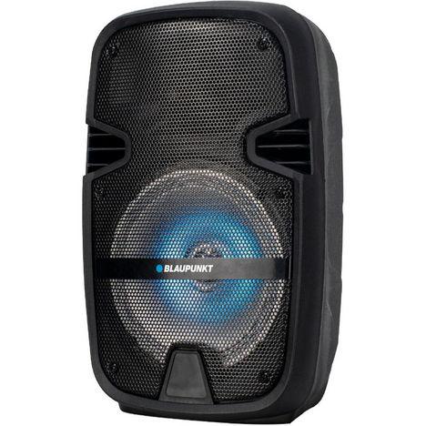 BLAUPUNKT Enceinte portable Bluetooth BLP 3925 - Noir