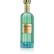 ITALICUS Liqueur d'agrumes 20%
