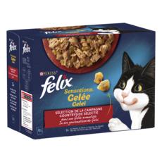 FELIX Sachets repas sensations pâtée gelée viandes pour chat 12x100g