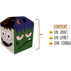 Boîte surprise Halloween : courge comestible, un livre et un jouet 2kg