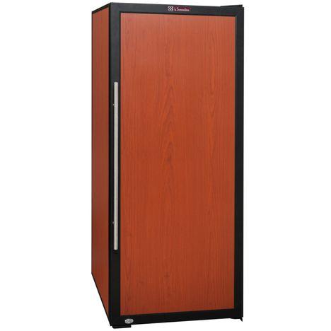 cave vin de vieillissement ctp 170 168 bouteilles 47 db porte pleine sommeliere pas cher. Black Bedroom Furniture Sets. Home Design Ideas
