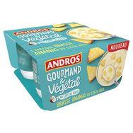 Andros brassé végétal ananas 4x100g
