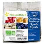 200 g - NaturAttitud - Mélange 4 fruits bio canneberge physalis mulberry myrtille