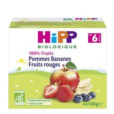 HiPP HIPP Petit pot dessert pommes bananes fruits rouges bio dès 6 mois