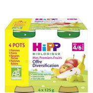Hipp bio pomme poire raisin banane pêche 4x125g dès 4-6mois