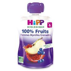 HIPP Hipp bio gourde pomme myrtille grenade 90g dès 6 mois