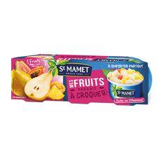 St Mamet mes fruits à croquer paradis 3x135g