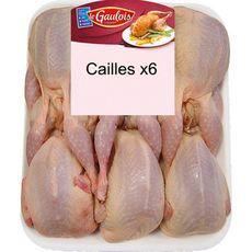 LE GAULOIS Cailles 6 pièces 960g