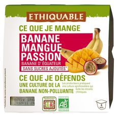 ETHIQUABLE Purée de fruits bio équitable banane mangue passion 4x100 g