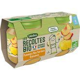 Blédina Blédina Petit pot dessert pomme nectarine et banane bio dès 6 mois 2x130g