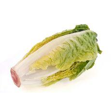 Salade sucrine bio 2 pièces