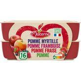 Materne compote pomme framboise fraise myrtille 16x100g