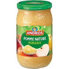 Andros compote de pommes avec morceaux bocal 740g
