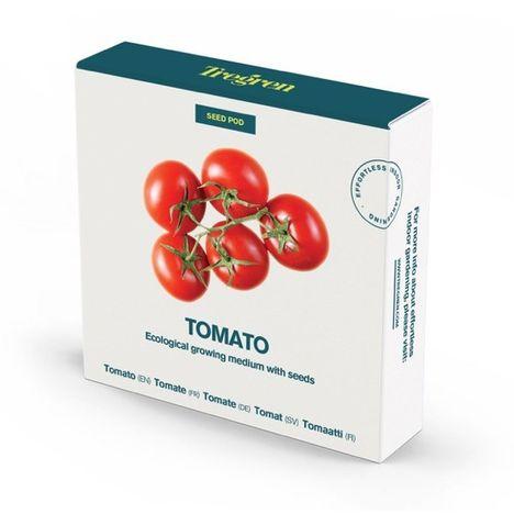 TREGREN Kit prêt à pousser Tomates cerises pour jardin d'intérieur