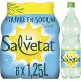Salvetat eau minérale gazeuse 6X1,25l