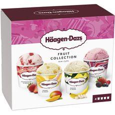 HAAGEN DAZS Häagen-Dazs Mini pot fruit collection 326g 4 mini pots 326g