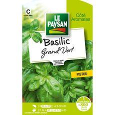 Le Paysan Semence potagère basilic grand vert x1