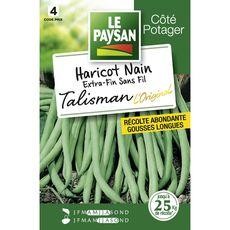 Le Paysan Semence potagère haricot talisman x1