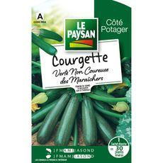 Le Paysan Semence potagère courgette verte x1