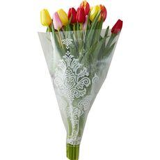 tulipes arlequin x10
