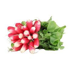 Radis roses 1 botte