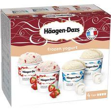 HAAGEN DAZS Häagen Dazs petits pots yogurt et strawberry 365g