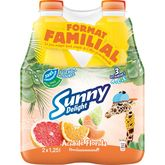 Sunny Delight acidulé 2x1,25l