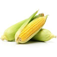 maïs bio épis x2 -400g