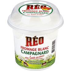 REO Fromage blanc Campagnard 8.1% MG 500g