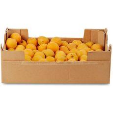 Abricots confiture 5kg 5kg