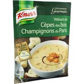 Knorr moments gourmets velours de cèpes des bois 91g