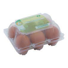 POUCE Oeufs de poules moyens datés du jour de ponte 6 œufs