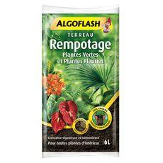 Algoflash Terreau rempotage plantes vertes et fleuries 6l