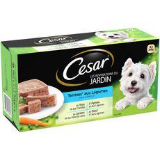 CESAR Assortiment barquettes pâtée viandes légumes pour chien 4x300g