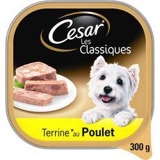 CESAR Barquette terrine de pâtée au poulet pour chien 300g