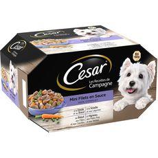 CESAR César Barquettes pâtée mini filés en sauce viandes pour chien 8x150g 8x150g