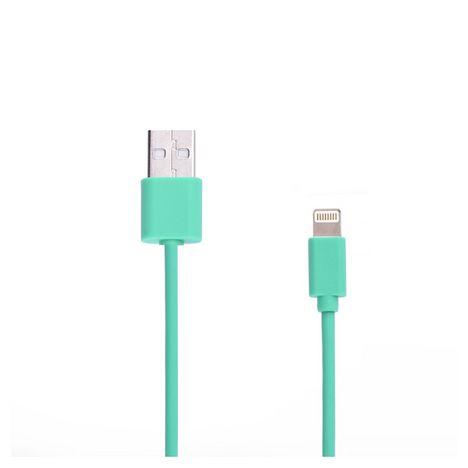 QILIVE Câble de charge USB vers Lightning - Mâle/mâle - 1 mètre - Caoutchouc Vert