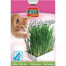 RIGA Herbariga herbes fraîches pour chat 1 pièce